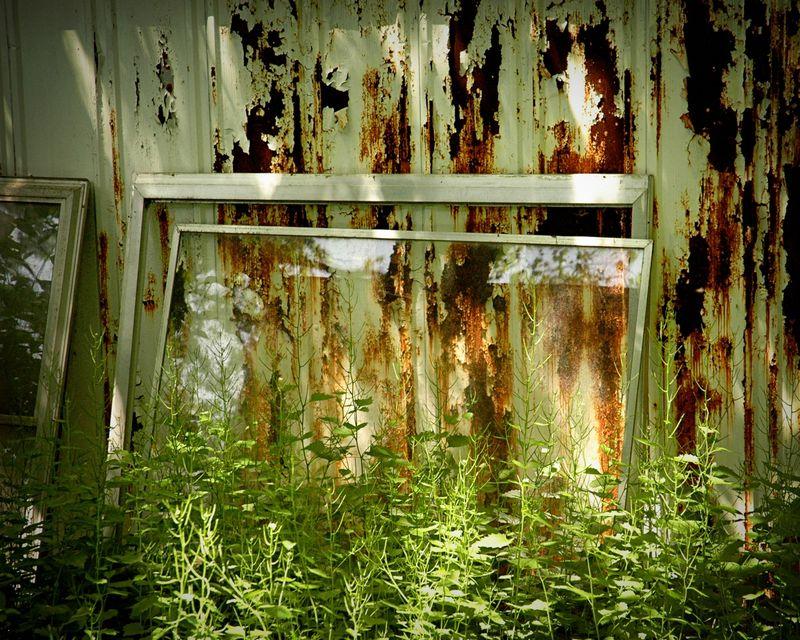 Blog window